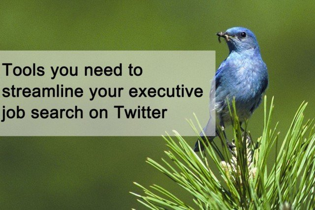 Tools you need to streamline your executive job search on Twitter