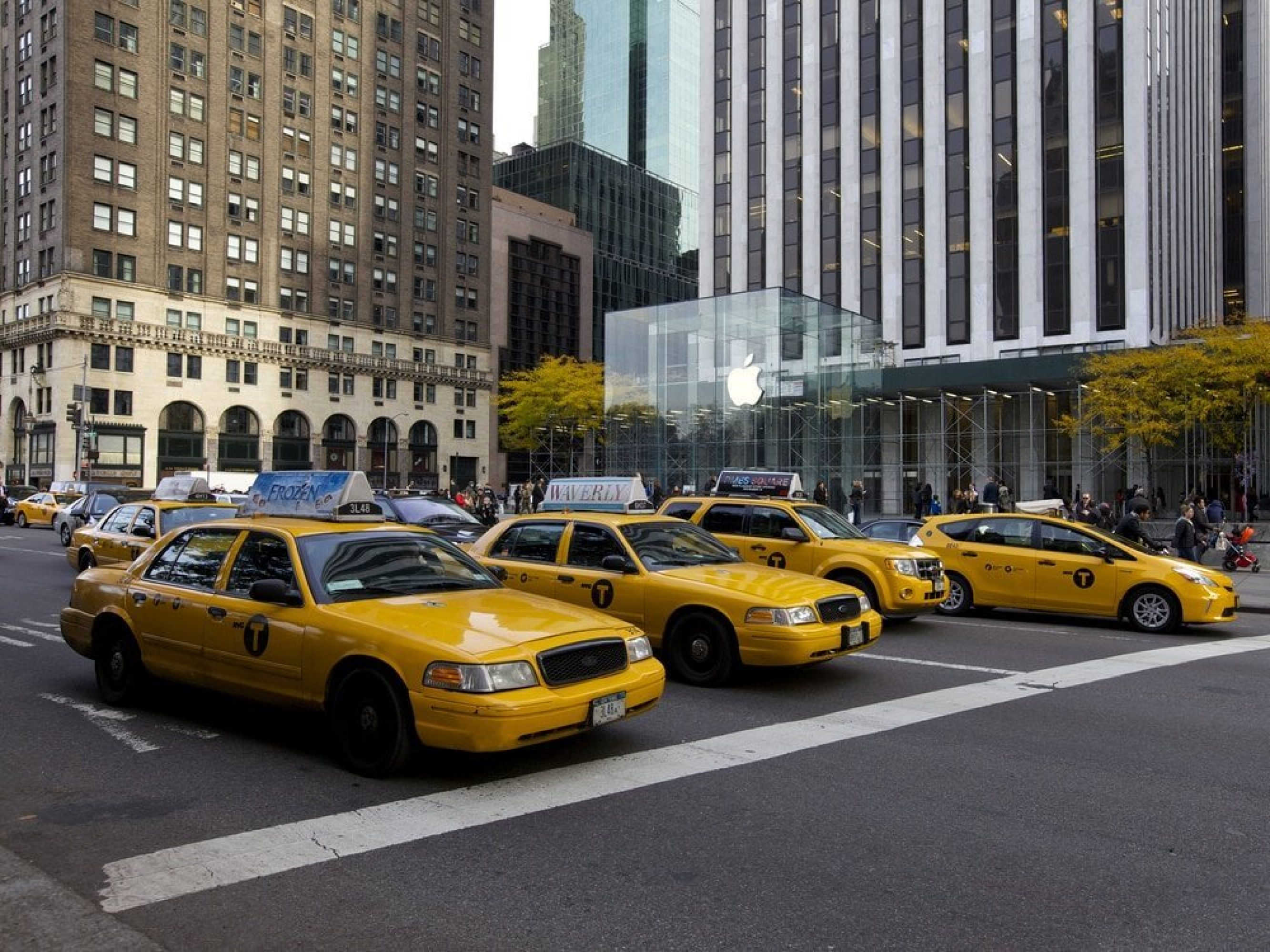 Career advice and outplacement New York