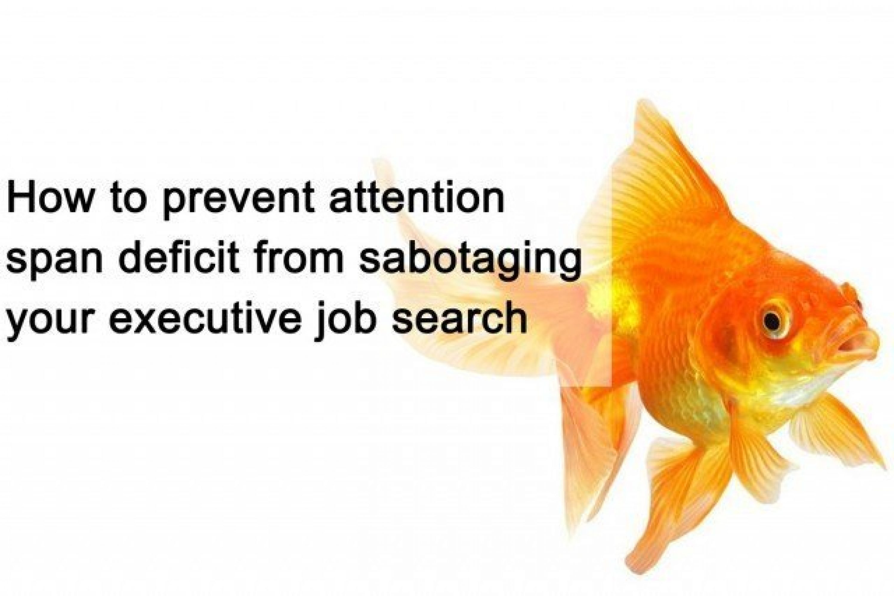How to prevent attention span deficit from sabotaging your executive job search